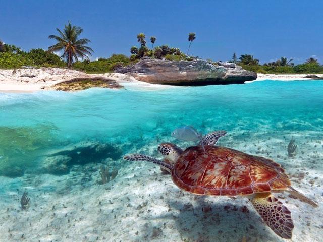 02 maldive destinazione paradiso - 2 9
