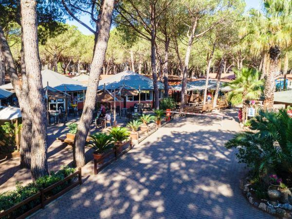 Il Gabbiano Camping Village - Albinia